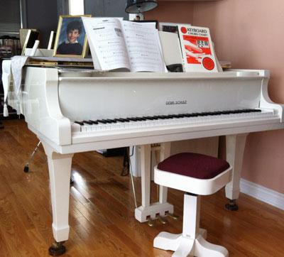 Gebr.Schulz baby grand klavier