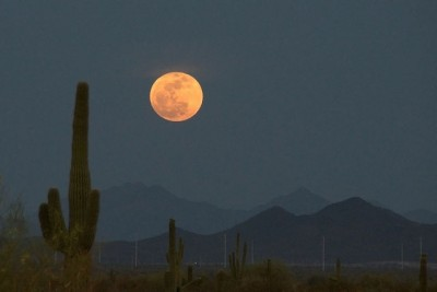 Super moon 400x267 Perigee Super Moon Slideshow  photo